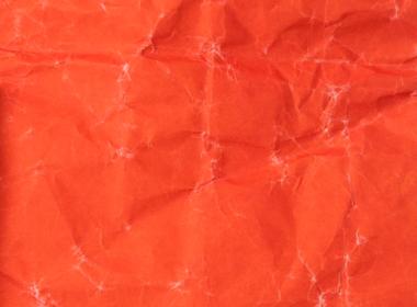 インナーカラー:オレンジ